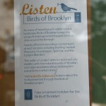 Birds of Brooklyn @ Sweet Melissa's in Cobble Hill