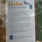 Birds of Brooklyn @ Sweet Melissa's in Cobble Hill