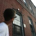 Birds of Brooklyn @ 30 Maujer Street in Williamsburg