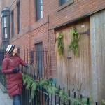 Birds of Brooklyn @ Willowtown Gardens