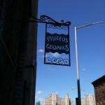 Birds of Brooklyn at Proteus Gowanus