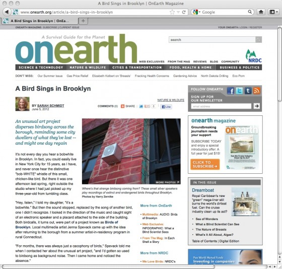 OnEarth Article
